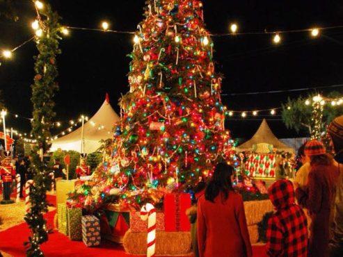 christmas-in-kerala-InMarathi
